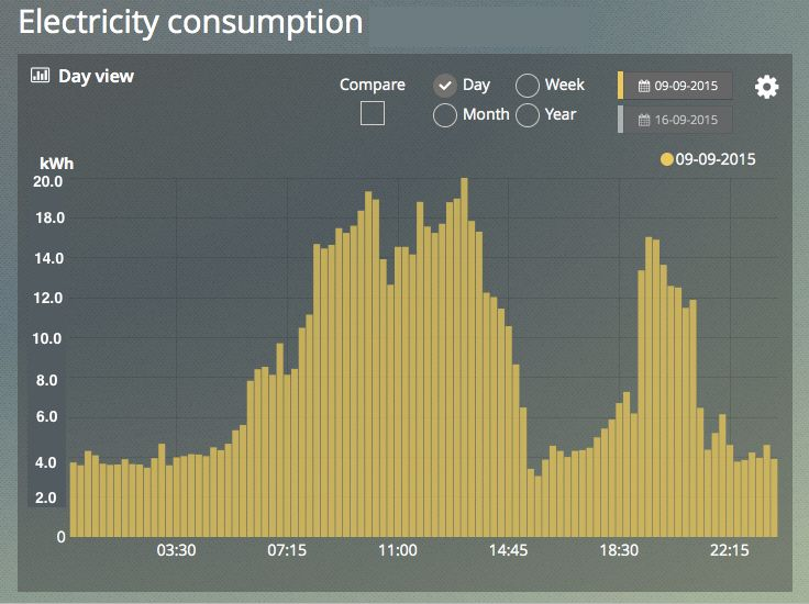 Real-Time Electricity Monitoring